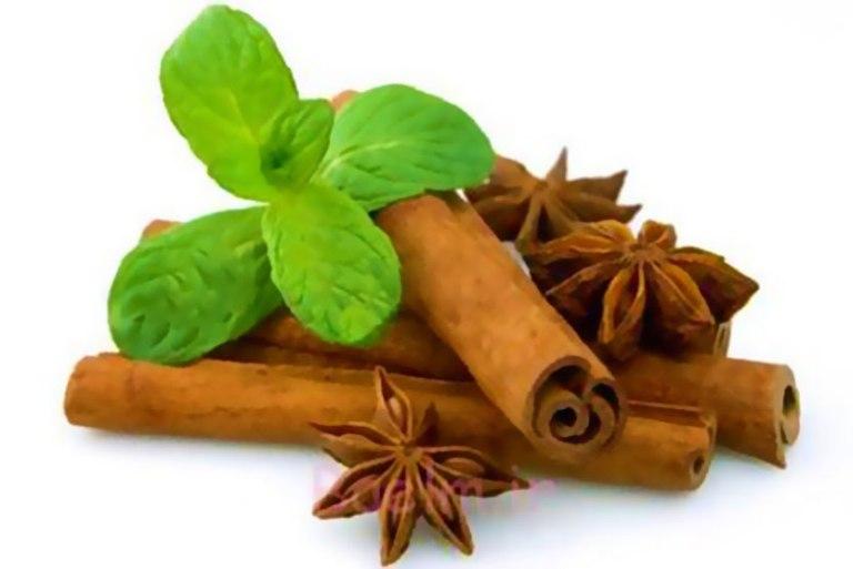 ۲۰۰ هزارتن گیاهان دارویی سالانه در کشور تولید می شود/ ارزآوری گیاهان دارویی جایگزینی برای صادرات نفت