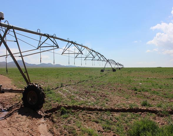 کشاورزی چقدر انرژی مصرف می کند؟