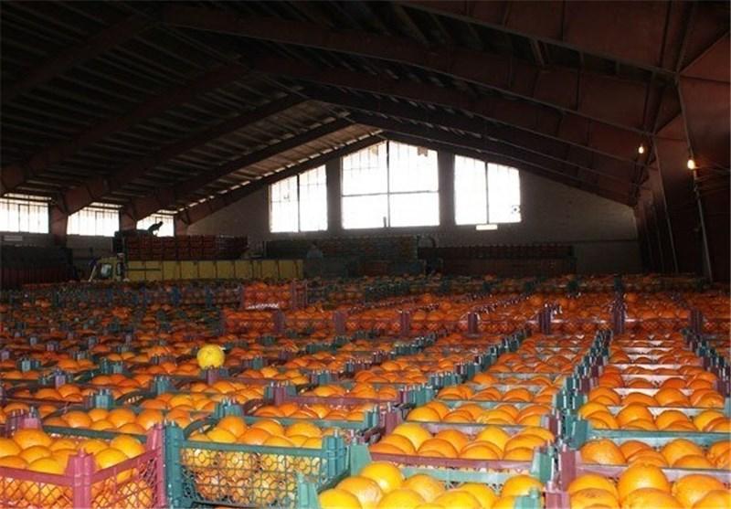 مشکلات صادرکنندگان محصولات کشاورزی به روسیه با «نیما»