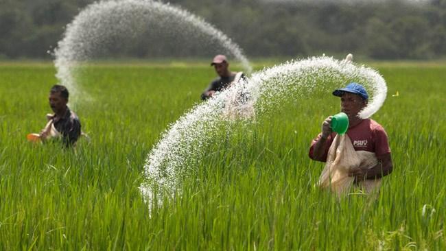کشاورزان به صورت میانگین روزانه کمی بیش از 50 هزار تومان حقوق دریافت میکنند