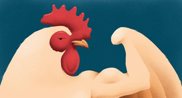 مرغ محبوبترین گوشتِ جهان ثروتمند است