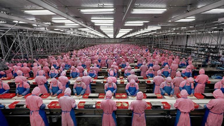 چه عواملی رشد اقتصاد چین را کاهش داد؟