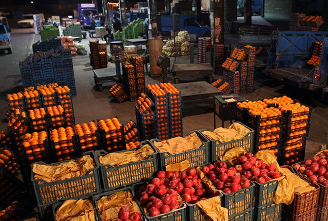 تصویر مبهم صادرات کشاورزی