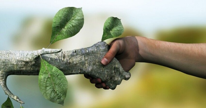در عصر پساکرونا جنبشهای محیطزیستی فعال میشود