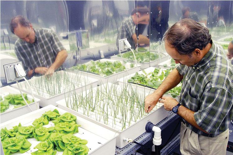 هنرستانهای وابسته به جهاد کشاورزی به ۴۰ واحد افزایش مییابد