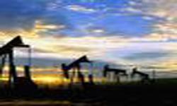 نفت ایران با کشتی ها و بیمه ایرانی وارد هند می شود