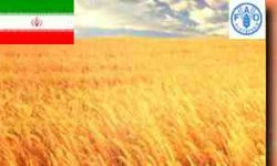 فائو اعلام کرد: کسری ۴ برابری تراز تجاری کشاورزی کشورهای در حال توسعه